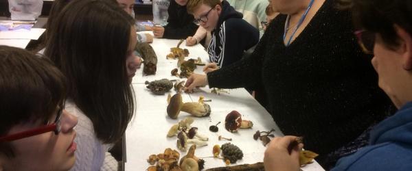 Alumnos de Climántica del IES Virxe do Mar estudian los efectos del Cambio Climático en los hongos